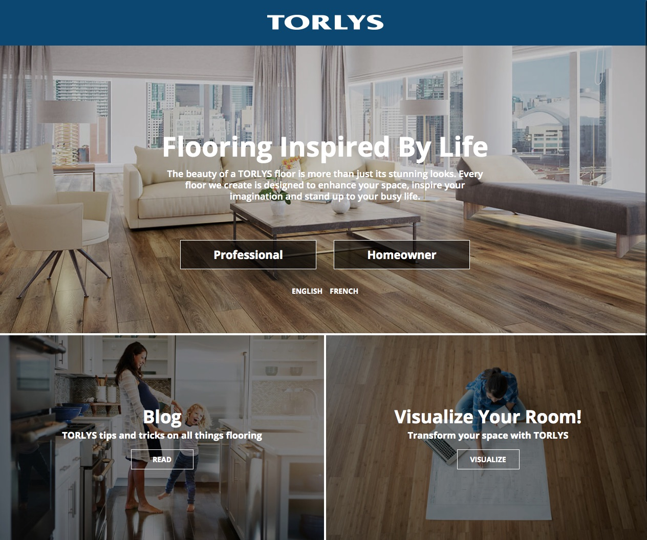 New TORLYS Website Screenshot