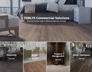 Screenshot of TORLYS Professional home page with market pages