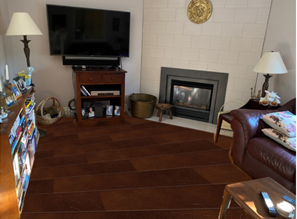 Family Room with floors added from Visualizer