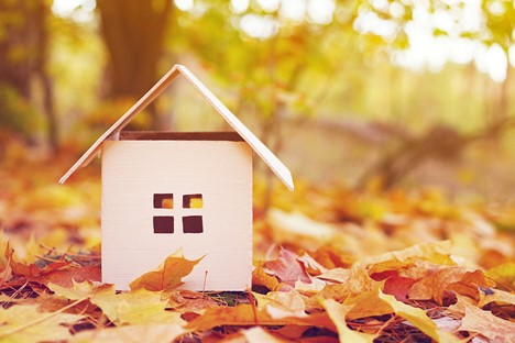 Toy house in the autumn leaves